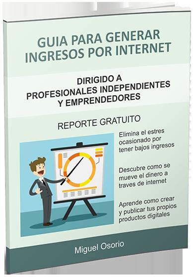 reporte  ingresos por internet
